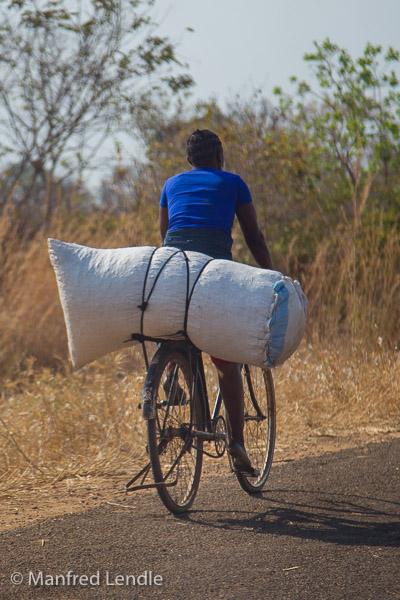 2019_Zambia_1D-5685.jpg