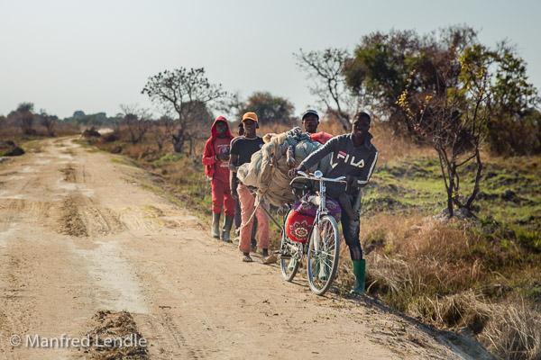 2019_Zambia_5D-1146.jpg