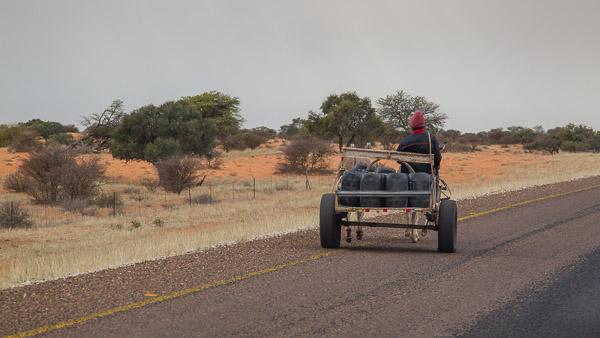 2018_Kalahari_1D-5359.jpg