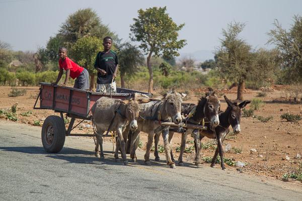 Zimbabwe_2012_1D-1048.jpg