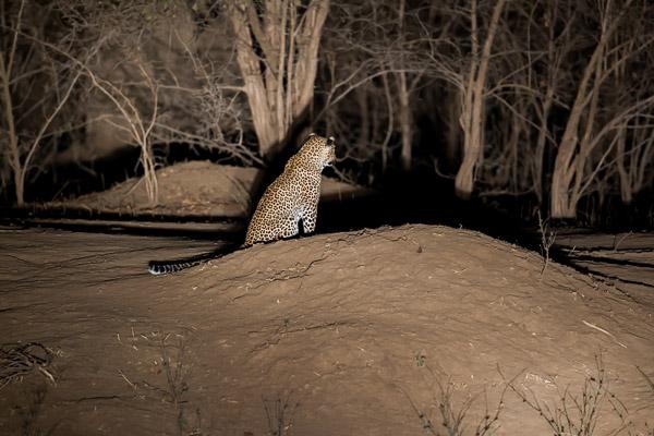 Zimbabwe_2012_1D-9859.jpg