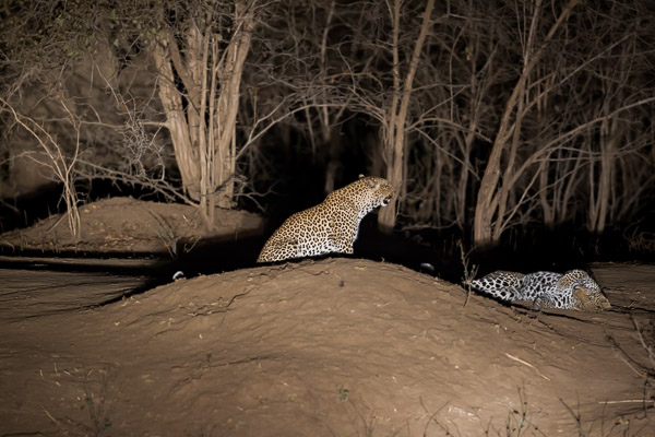 Zimbabwe_2012_1D-9880.jpg