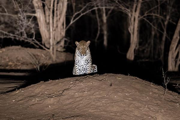 Zimbabwe_2012_1D-9883.jpg
