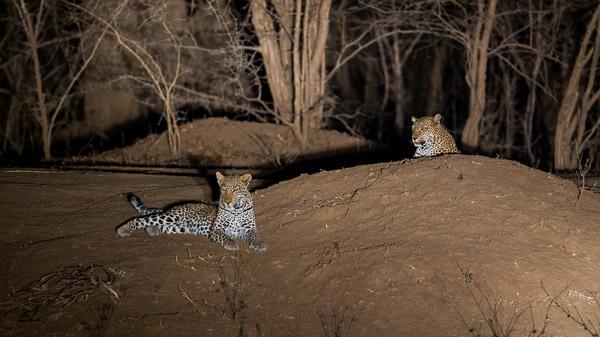 Zimbabwe_2012_1D-9887.jpg